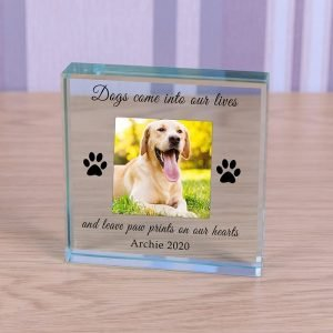 Personalised Glass Photo Frame – Paw Prints