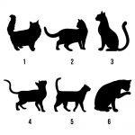 Personalised Cat Peg Hook